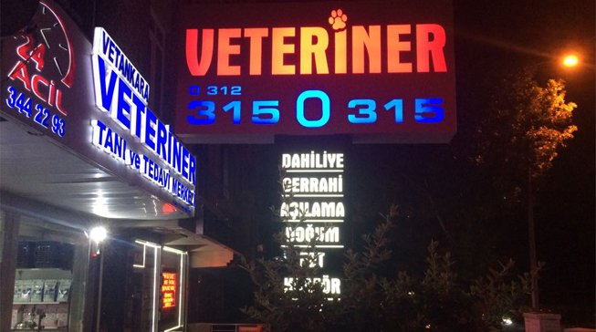 Veteriner Ankara